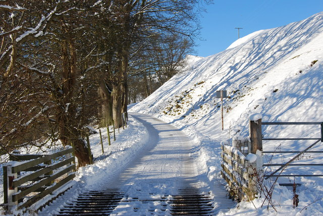 Cattle grid onto the open hill