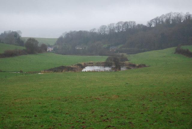 Pond, Escott Farm