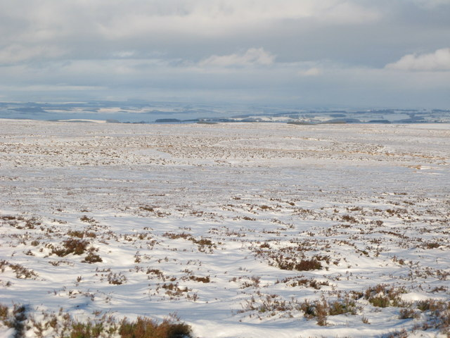 Snowy panorama from Stobb Cross (7: NNE - Herds Law)
