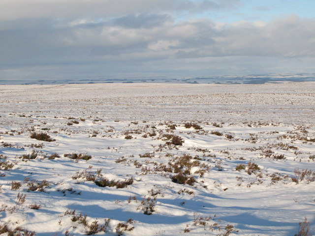 Snowy panorama from Stobb Cross (8: N - Herds Law)