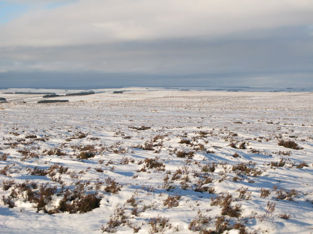 Snowy panorama from Stobb Cross (9: NNW - Herds Law)