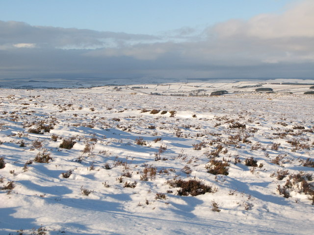 Snowy panorama from Stobb Cross (10: NW - Catton Beacon)