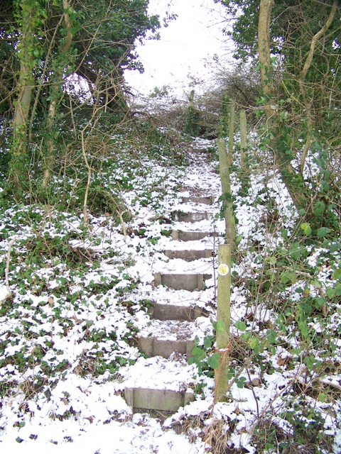 Steps to Knighton Hill