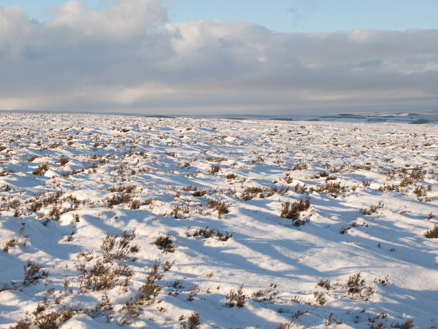 Snowy panorama from Stobb Cross (11: WNW - Moorland north of Hill 401)