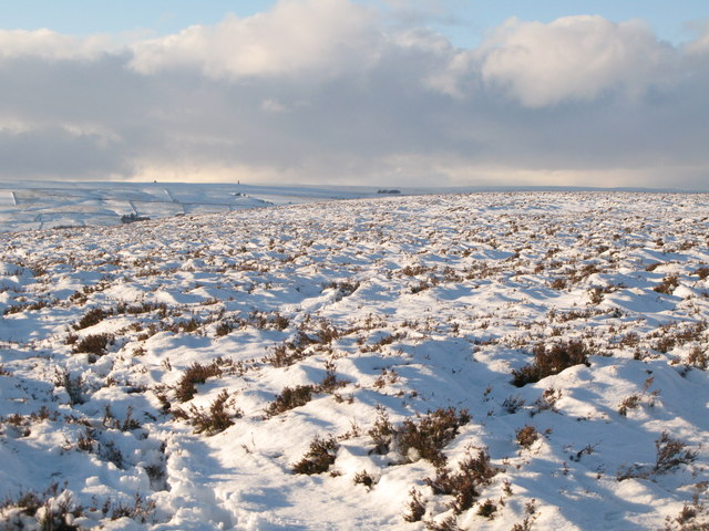 Snowy panorama from Stobb Cross (12: W - Hill 401)