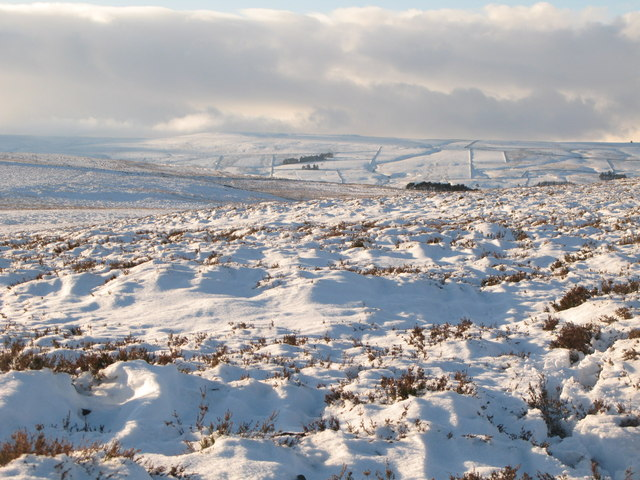 Snowy panorama from Stobb Cross (13: WSW - Haggerstone Moss and East Allen Dale)