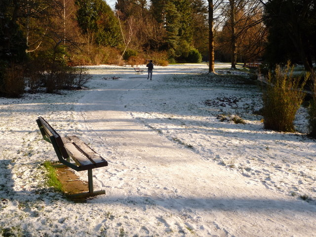 Bournemouth Gardens: a jogger in the snow