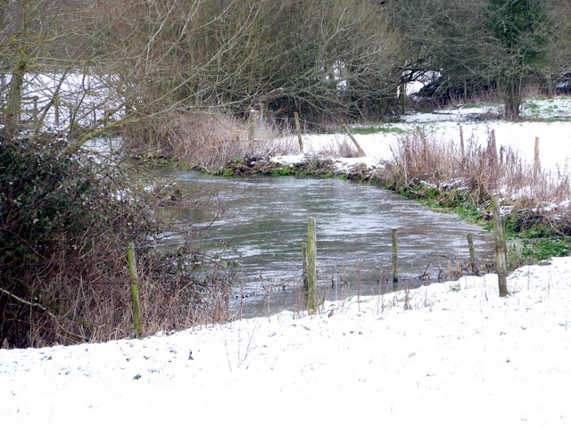 River Ebble, Stoke Farthing