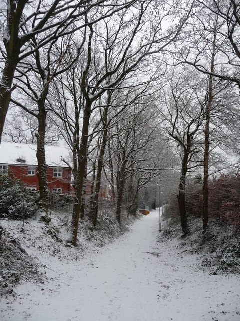 Tiverton : Path & Snow Scene