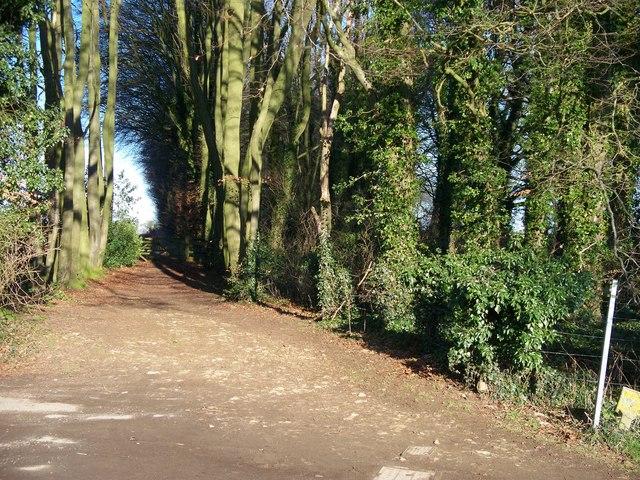 Start of bridleway