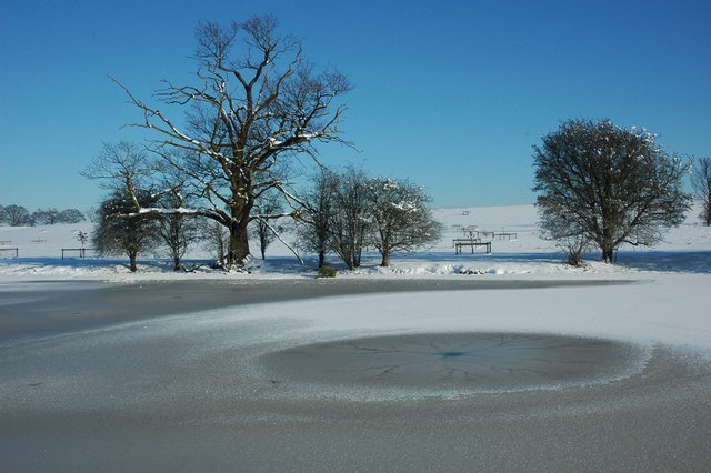 Trees beside a frozen Croome River