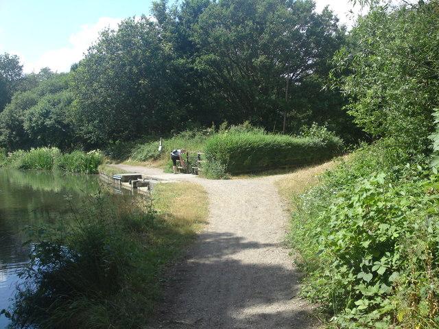 Basingstoke Canal Tow Path