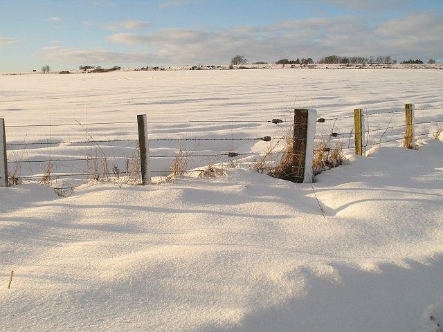 Fields near Mawcarse