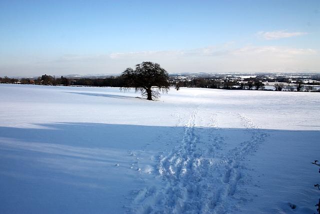 Snow covered North Field, Little Malvern