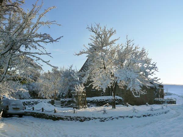 West Scrafton village green in winter