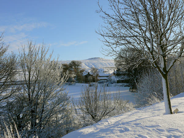 West Scrafton view