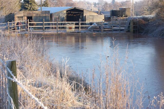 Frozen farm pond at Linton