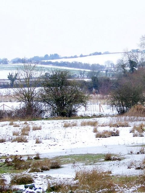 Frozen meadow near Bishopstone