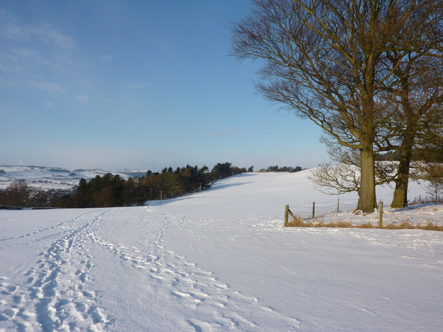 On Calton Pastures in the snow