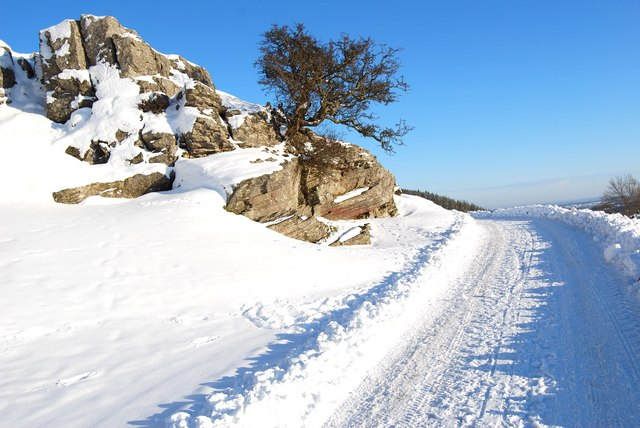 Top of the Panorama Walk