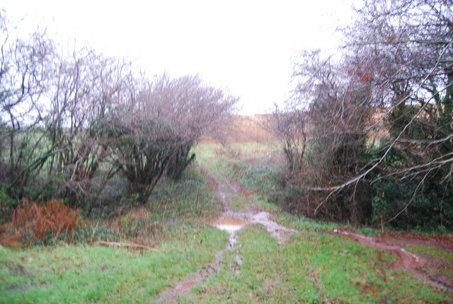 Muddy path near Vellow Wood