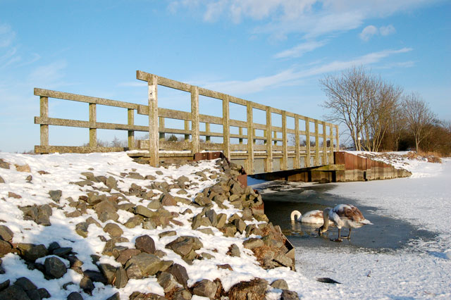 Ice-free pool under the footbridge at Napton reservoir