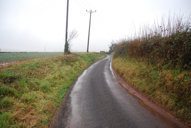 Rural lane  south of Capton