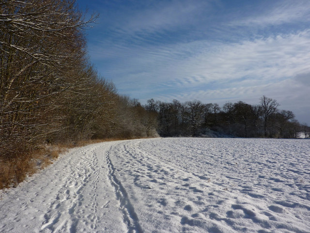 Field under snow and woodland edge