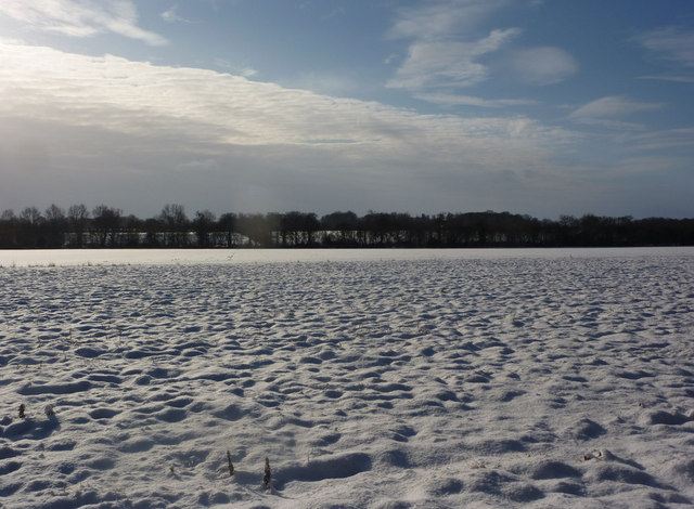 View across open snow covered field