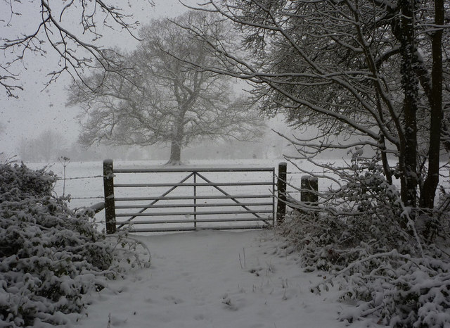 Snowscene with gateway and trees