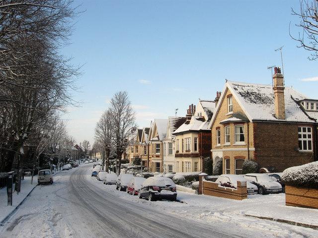 Wilbury Avenue