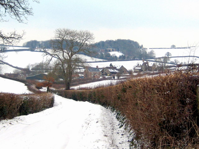 Lyatts in the snow