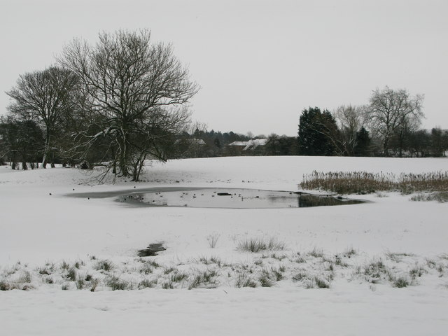 Little Studley Nature Reserve