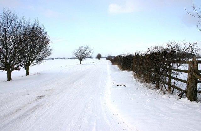 Lane to Moreton Paddox from entrance to Lodge Farm