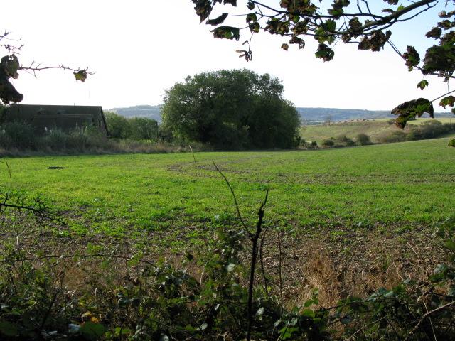 Farmland and Whiting Farm