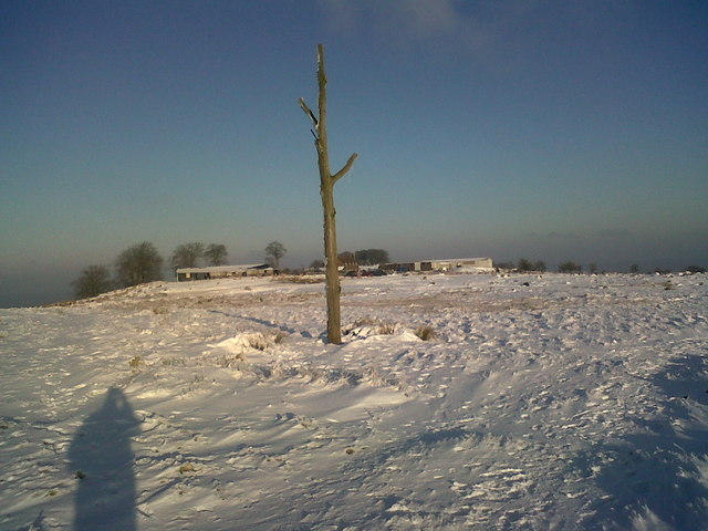 Marker Post On Snowy Clee
