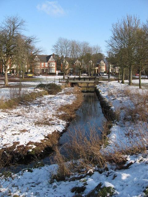 Roath Brook in Winter