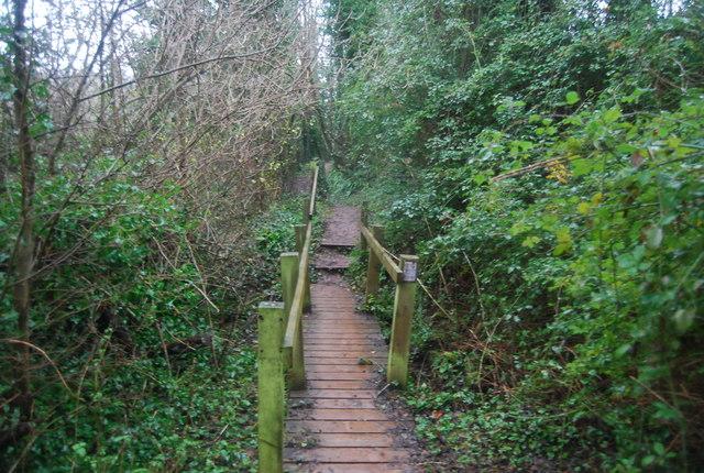 Wooden boardwalk, Aller Lane