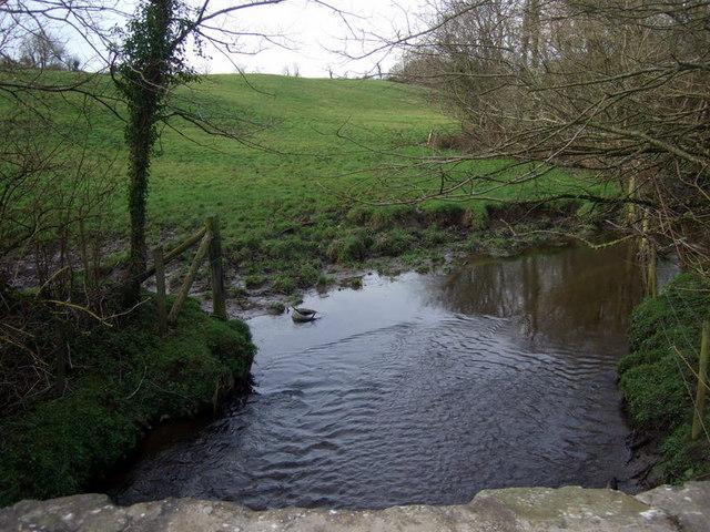 The stream at Lonesome bridge