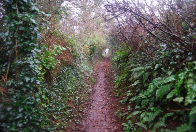 Aller Lane heading to Williton