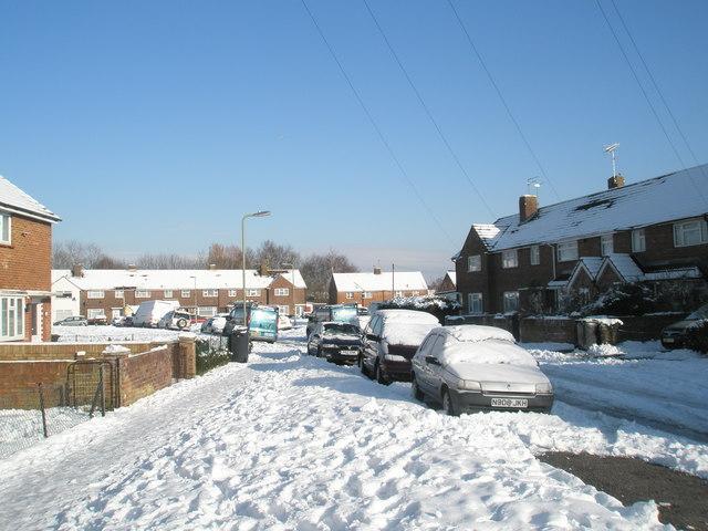 A snowy Colbury Grove