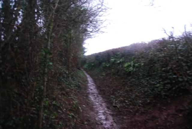 Aller Lane