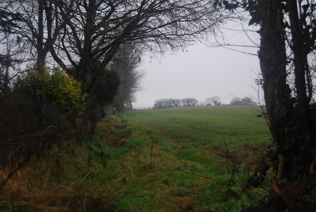 Field on the edge of Williton