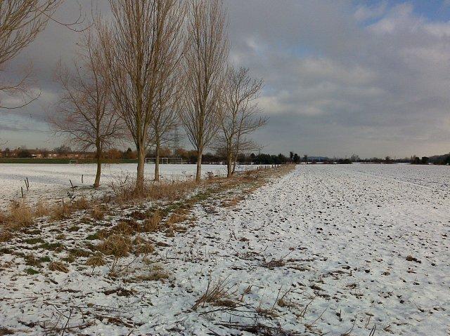 Field near Beeston Weir