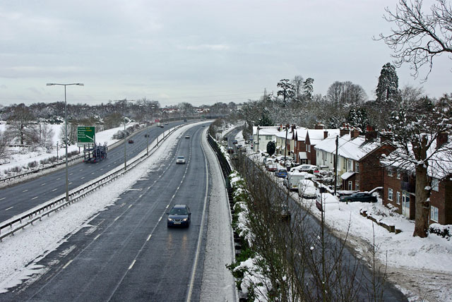 A23 at Tilgate Forest Row
