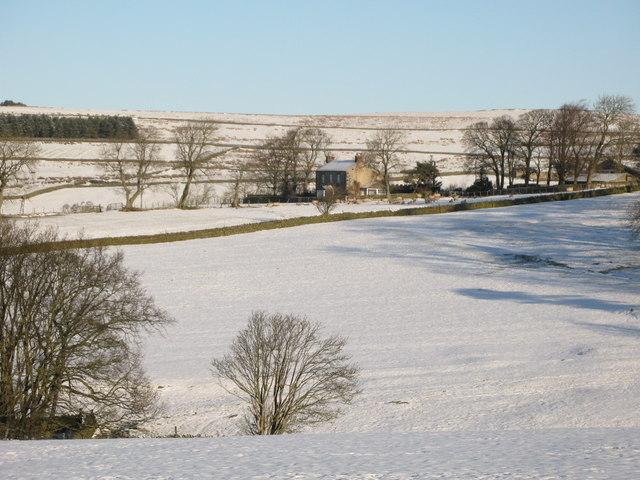 Snowy pastures around Portgate Farm