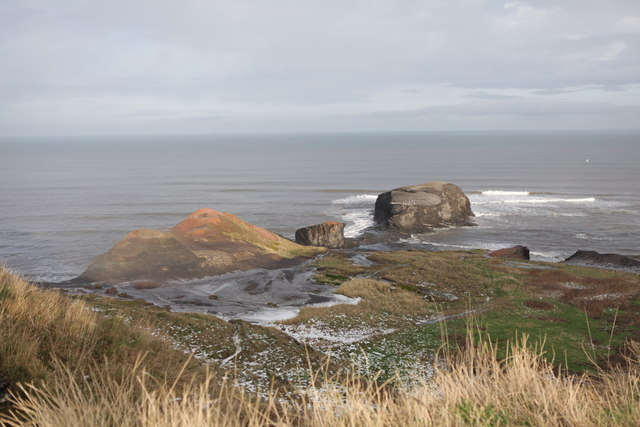 Cliffs above Saltwick Nab