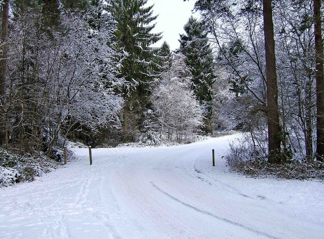 Wyre Forest - Hawkbatch car park access road in winter