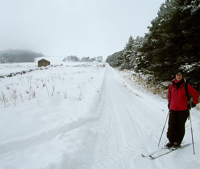Skiing Moor Lane