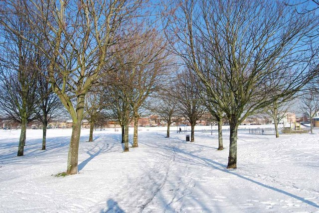 Winter in Walpole Park